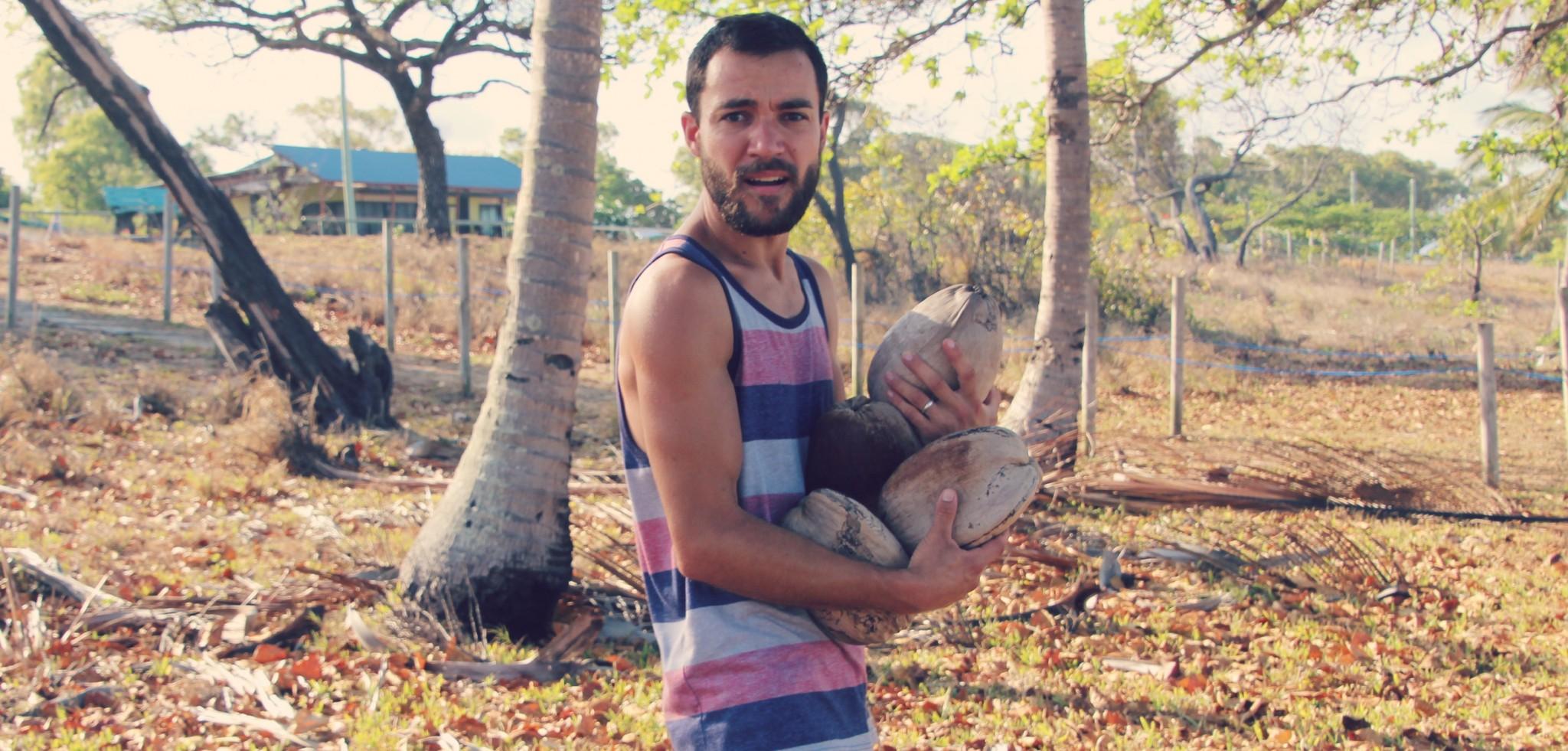 Tom ramasse des noix de coco sur la plage.