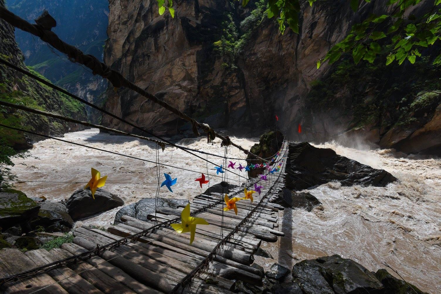 Pont de singe au dessus du canyon