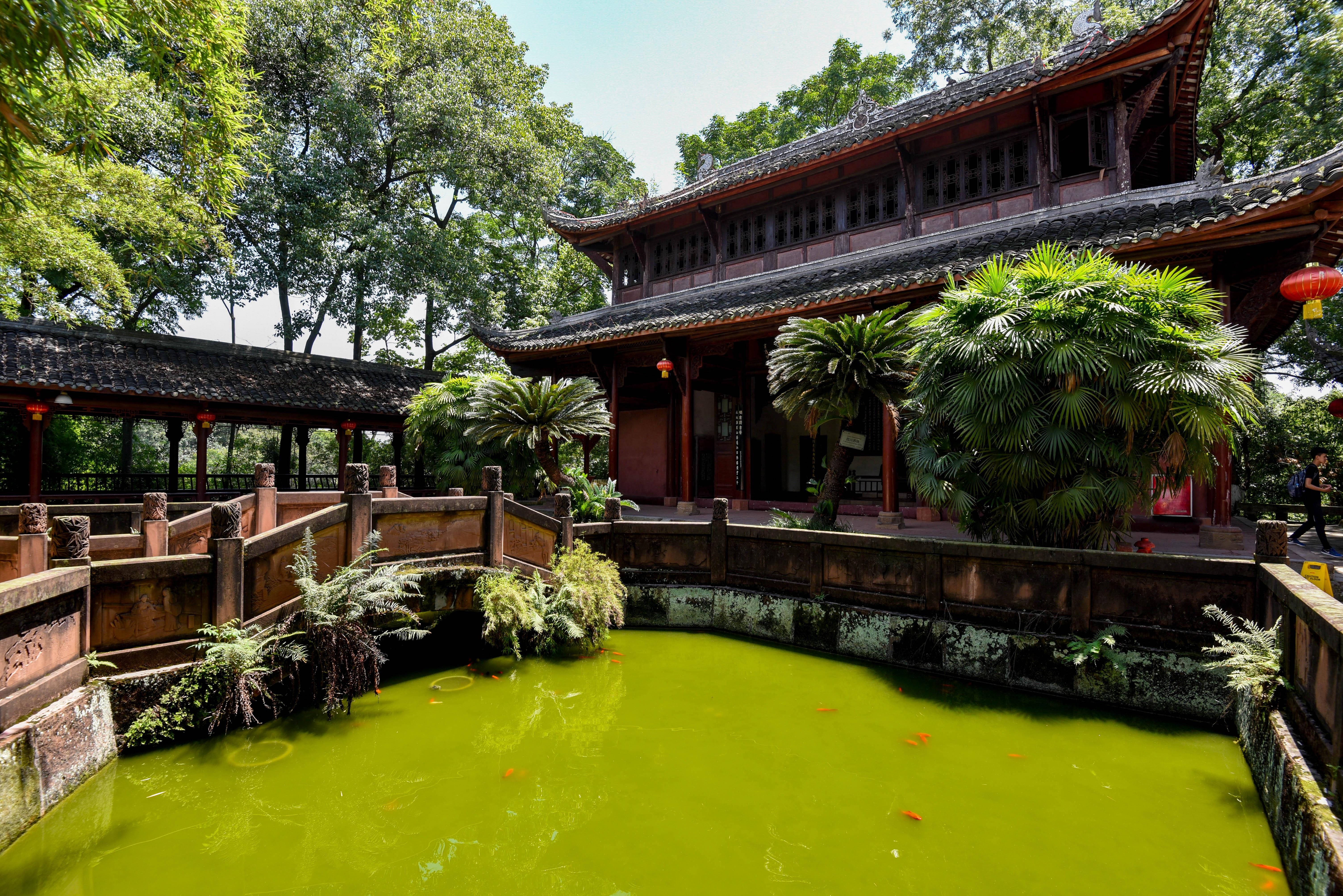 Parc du Bouddha de Leshan, près de Chengdu en Chine @neweyes