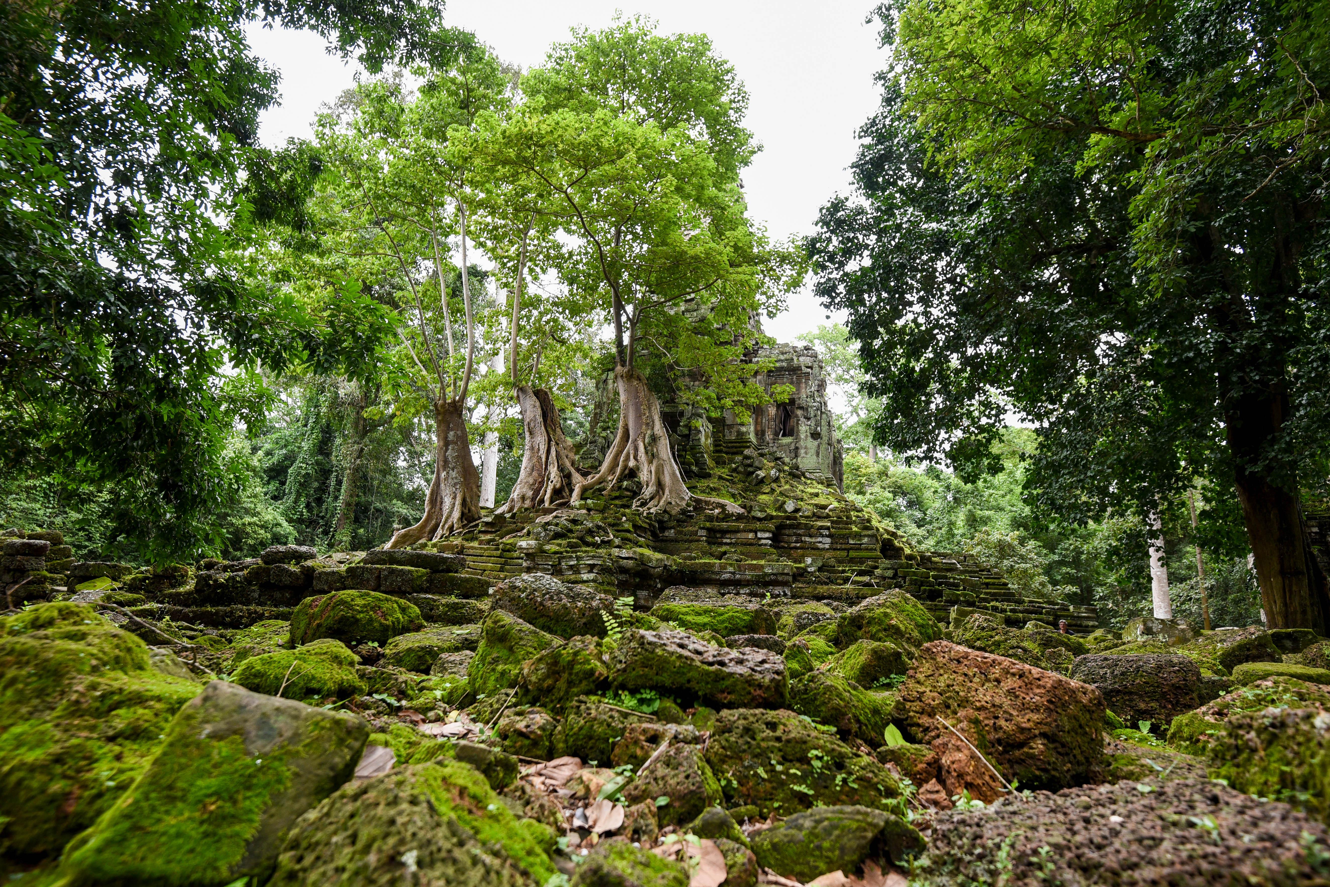 Voyager au Cambodge pour voir les temples d'Angkor @neweyes