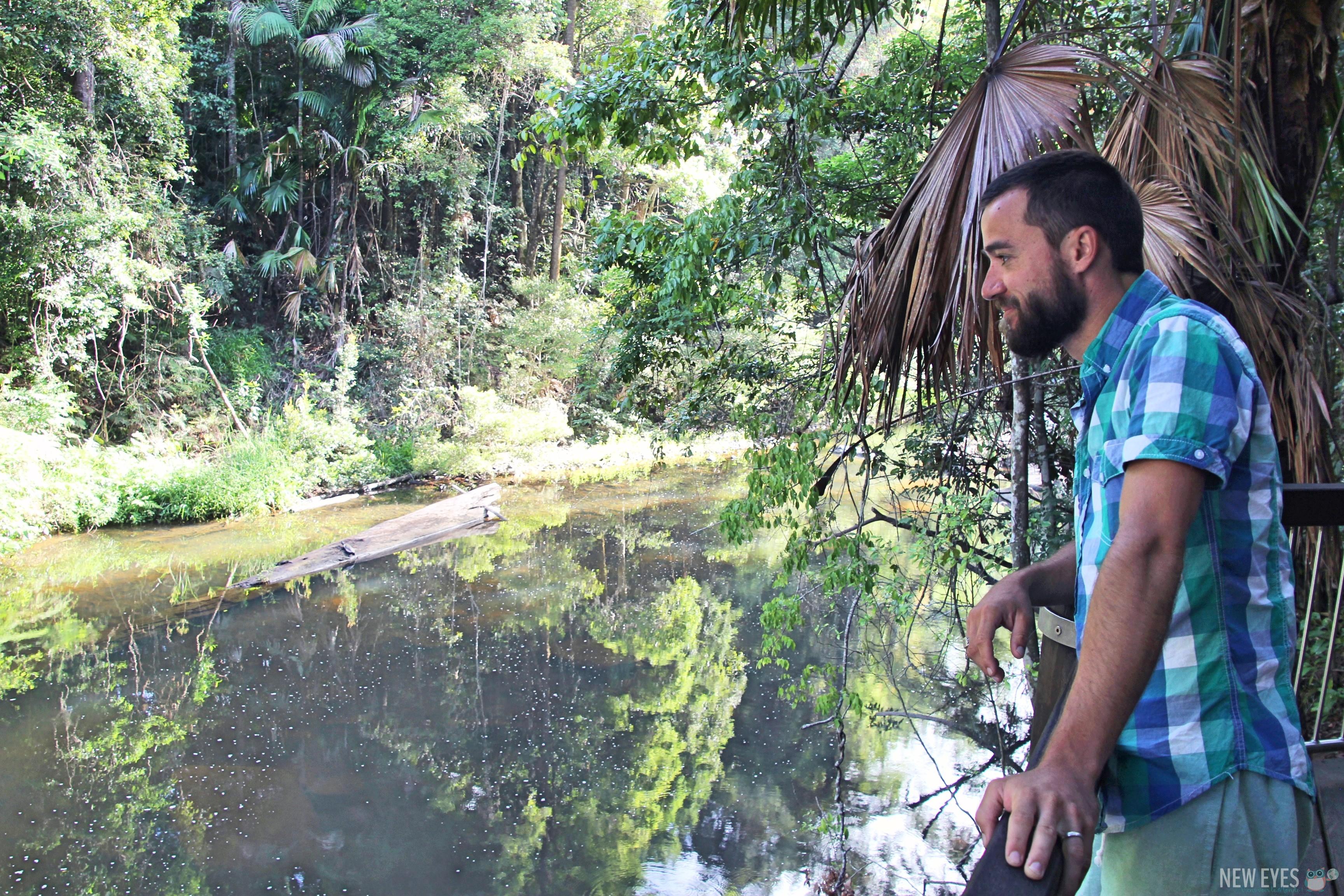 Comment voir des ornithorynques en Australie @neweyes