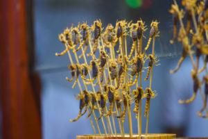 Manger des scorpions sur le marché de Pékin @neweyes